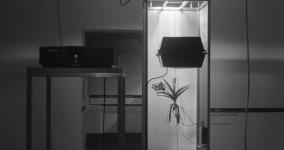 Mateusz Herzckas Life Support Systems: Vanda